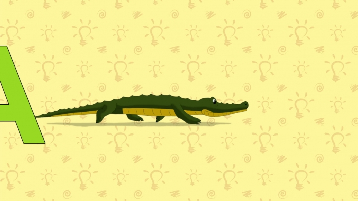 Alligator. English ZOO Alphabet - letter A