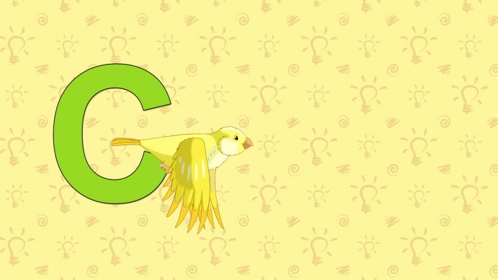 Canary. English ZOO Alphabet - letter C
