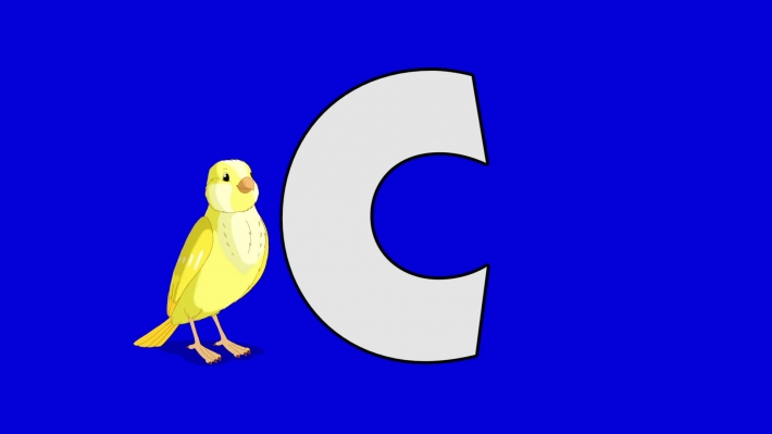 Letter C and Canary (background)