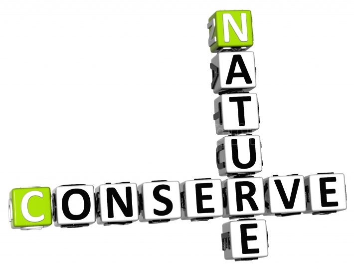 3D Nature Conserve Crossword