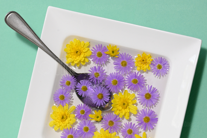 Abstract Plate dish with autumn flowers