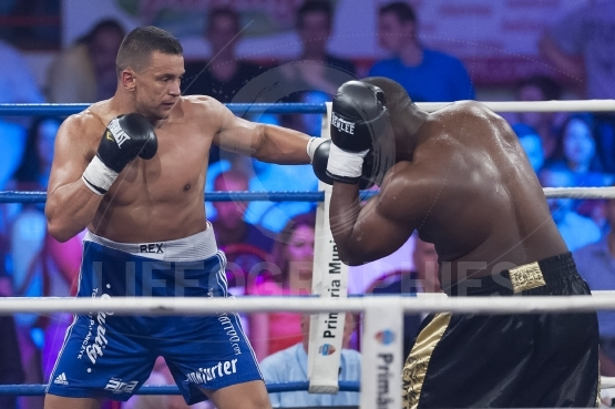 Athlete fight at the WBO Heavyweight
