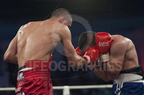 Athlete fight at the WBO welterweight