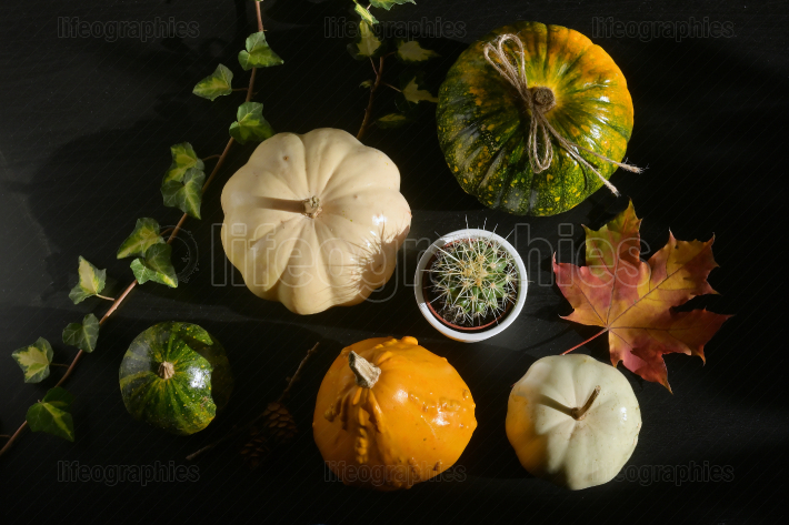 Autumn decoration with leaves and  Pumpkins