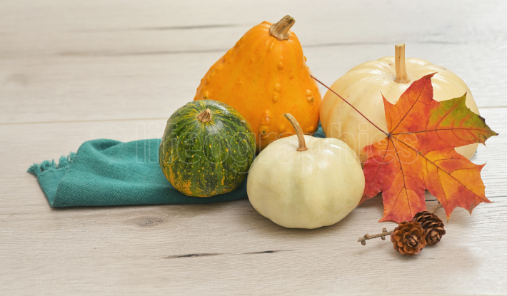 Autumn maple leaves with Pumpkins on white wooden