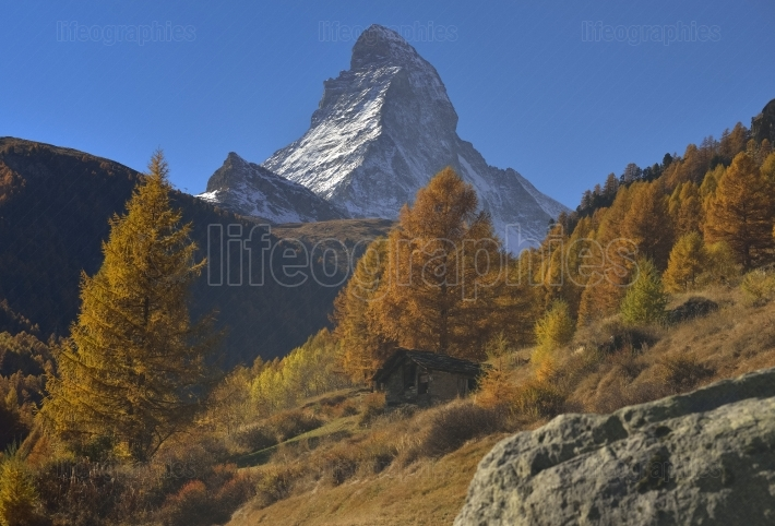 Autumn scene in zermatt with matterhorn mountain.