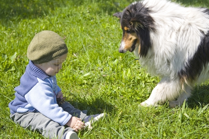 Baby boy and pet dog