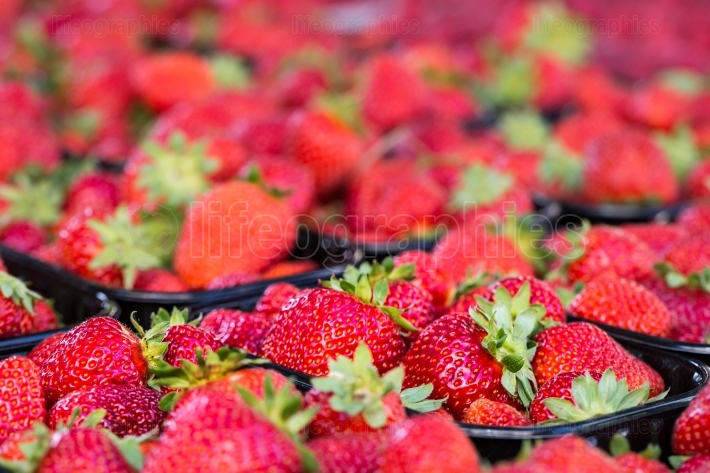 Baskets Of Fresh Strawberries In A Street Market