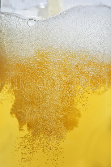 Blonde Pint Of Beer with Bubbles