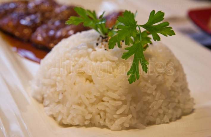 Boiled Rice with parsley branch
