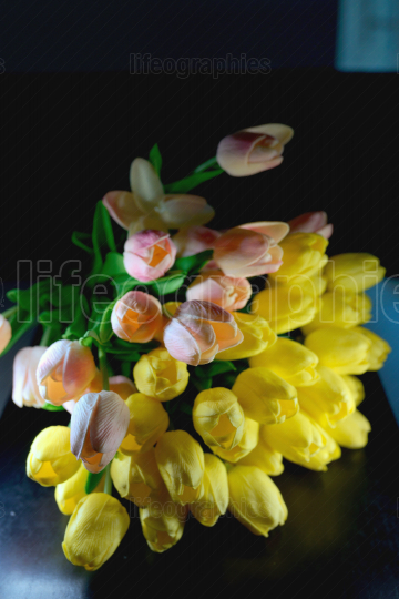 Bouquet of beautiful tulips