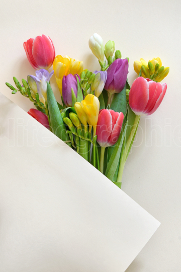 Bouquets Of Tulips and Freesia flowers on paper