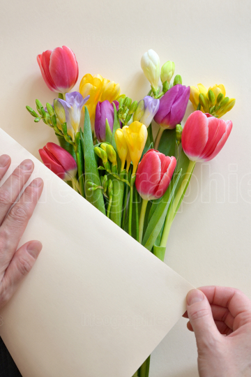 Bouquets Of Tulips and Freesia flowers on white paper