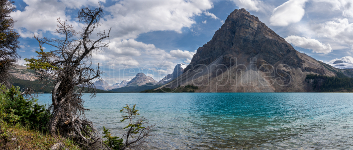 Bow Lake, Icefield Parkway, Banff National Park, Alberta, Canada