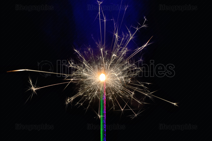 Burning sparkler isolated