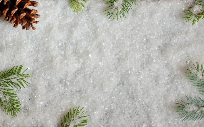 Christmas decoration with pine and snow