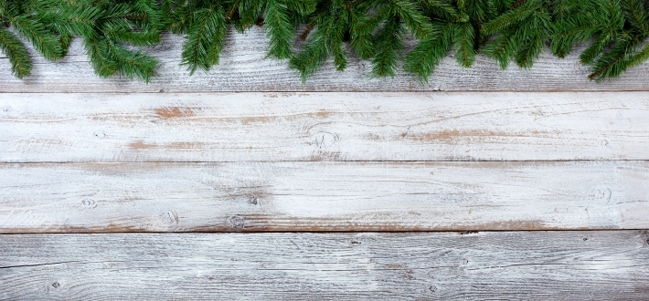 Christmas evergreen branches on white vintage wooden boards
