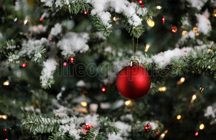 Christmas ornament with snowy fir branches and lights  Winter de