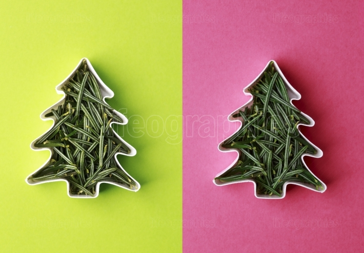 Christmas tree concept made of fir branches in the shape of a ca