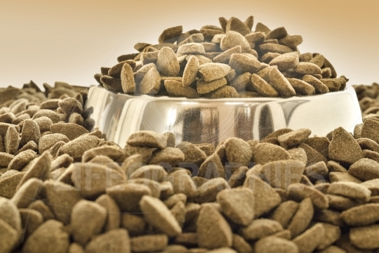 Close up of a bowl with dry dog food