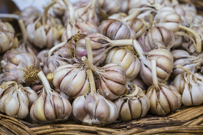 Close up of garlic on market