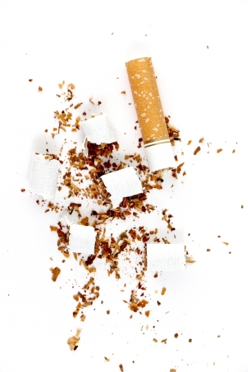 Cut Cigarette isolated on a white background