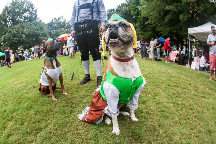 Dogs Wear Funny Bavarian Costumes At Atlanta Doggy Con Event