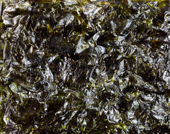 Dried green seaweed in macro background setting