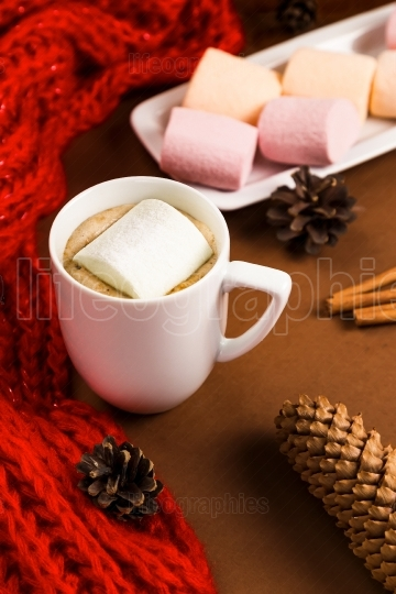 Drink hot chocolate with marshmallow near pine cones, red scarf