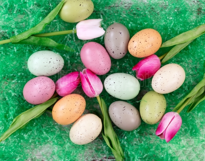 Easter eggs and tulips on grass background