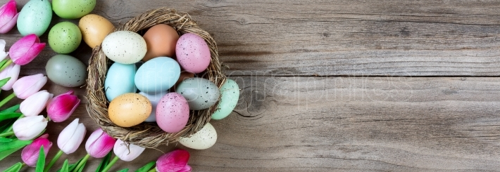 Easter eggs and Tulips on rustic wood