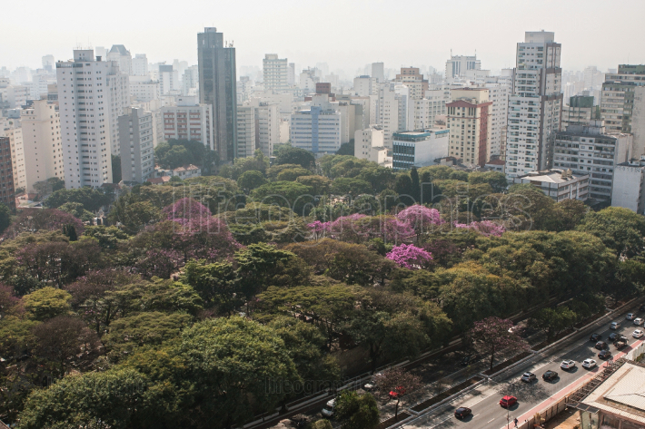 Elevated View Shows Buildings And Trees In Sao Paulo Brazil