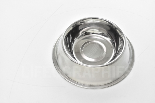 Empty steel bowl for dog food