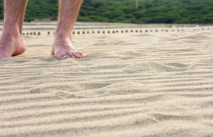 Feet  standing in sand