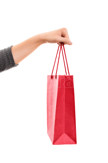 Female hand holding a shopping bag