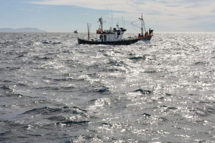 Fishing boat working at Gibraltar Strait