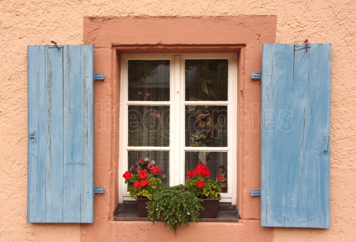 Flowered window with blue blinds on a pink wall