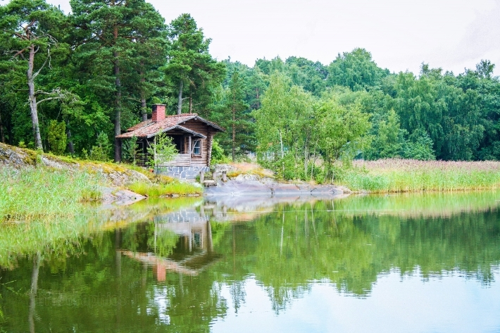 Forest and water in Finland