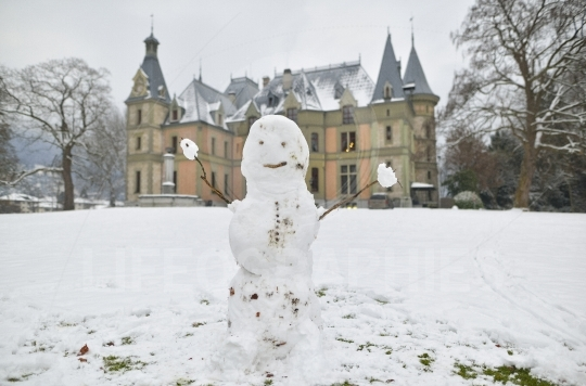 Funny snowman