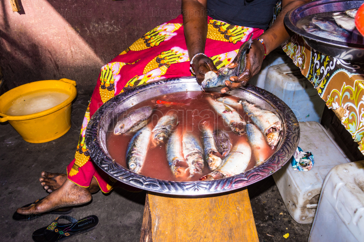 Gambian woman uses her hands to empty and clean fish