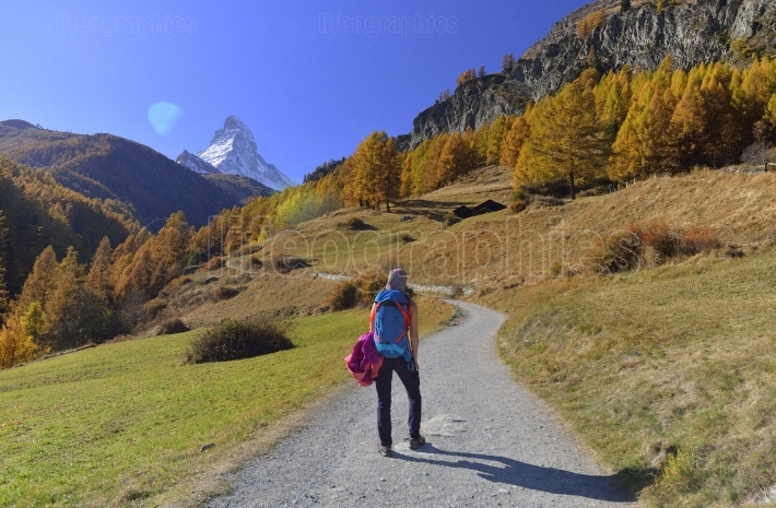 Girl on  hiking trail and autumn scene in zermatt with matterhorn mountain in background