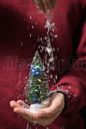 Girl With Christmas Tree In Hands