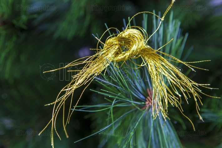 Golden threads for Xmas decoration