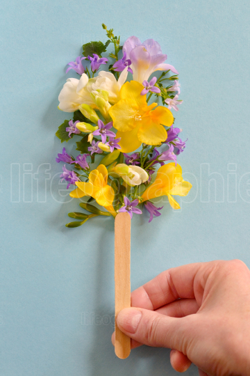 Hand holding popsicle from spring flowers