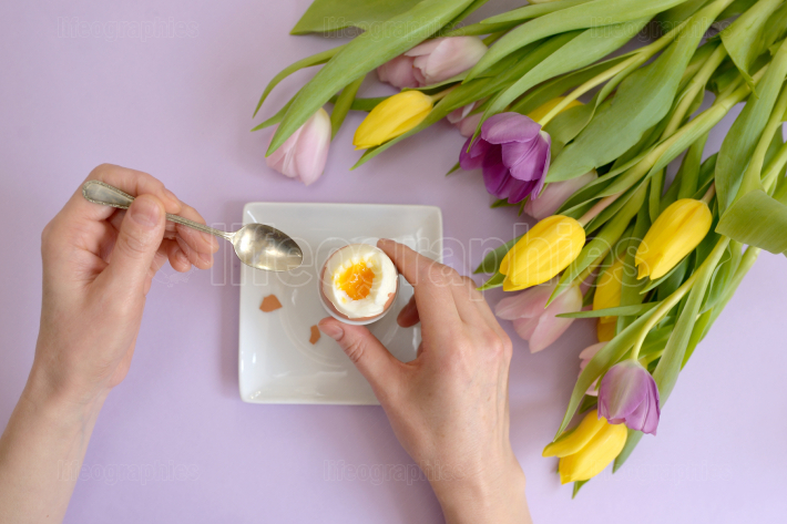 Hands over boiled egg and tulips