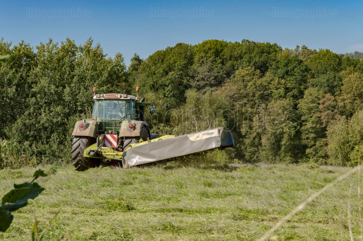 Last mowing of a tractor in a meadow