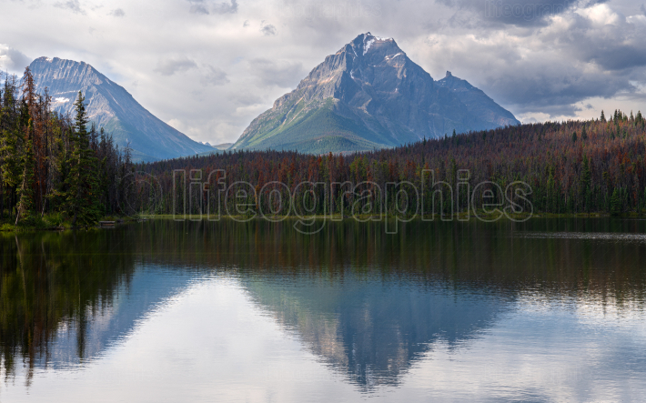 Leach Lake, Jasper National Park, Alberta, Canada