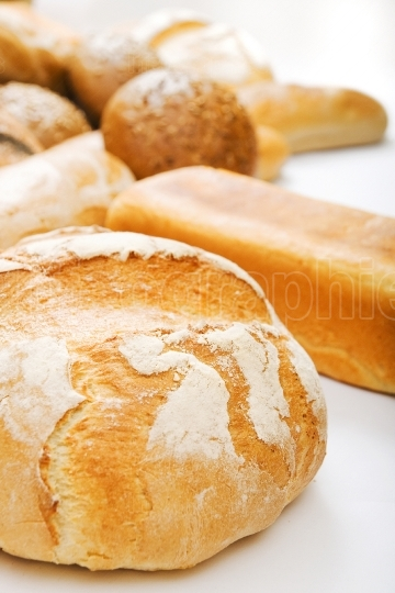 Many bread on white background