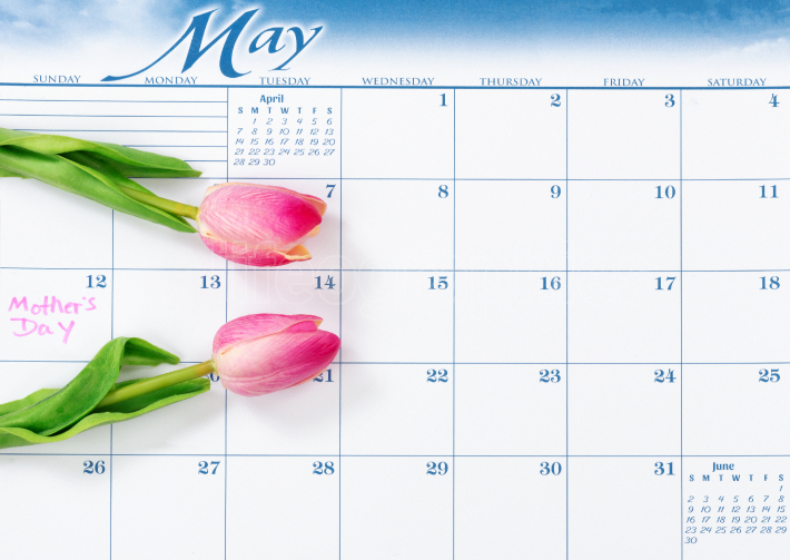 Mothers Day holiday date marked on calendar with pink tulips