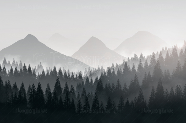 Mountains landscape in a foggy day